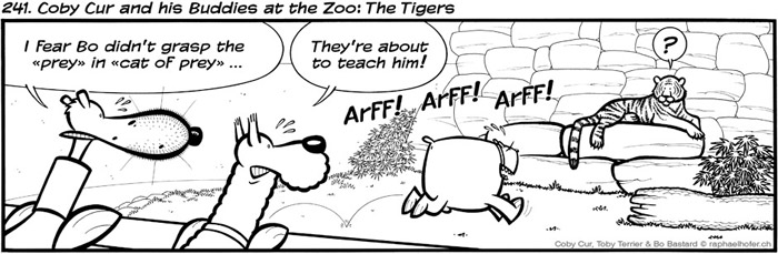 241. Coby Cur and his Buddies at the Zoo: The Tigers